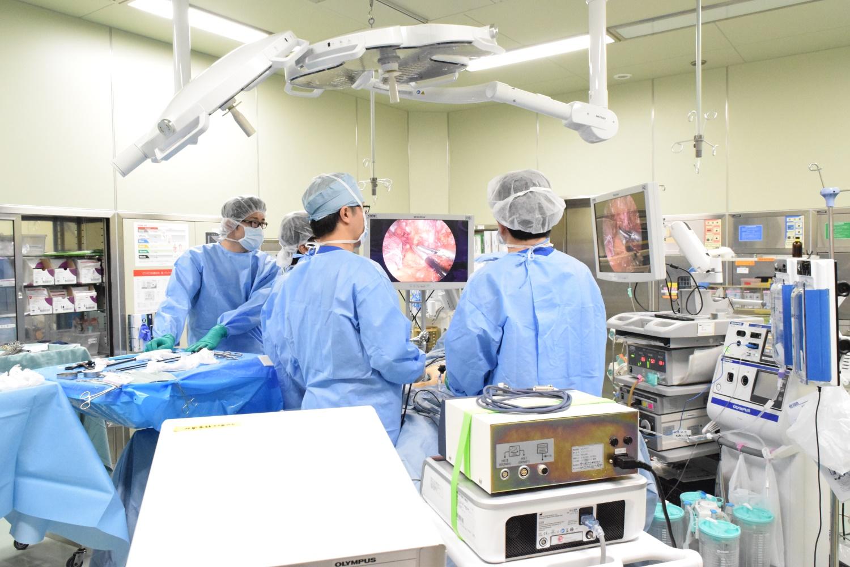 赤十字 病院 秦野